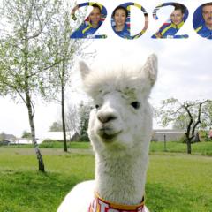 Kalendarz 2020-przynieś buraki dla alpaki!